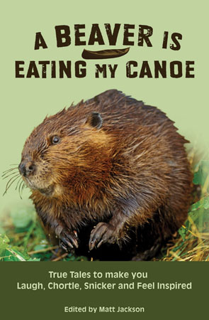A Beaver Is Eating My Canoe